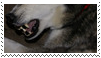 dog teeth stamp by goredoq