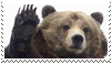 bear stamp by goredoq