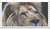 lion stamp by goredoq