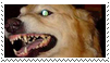 angry dog stamp by goredoq