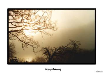 Misty Evening by teardropfire-photo