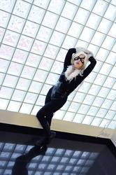 Black Cat by dancingelf