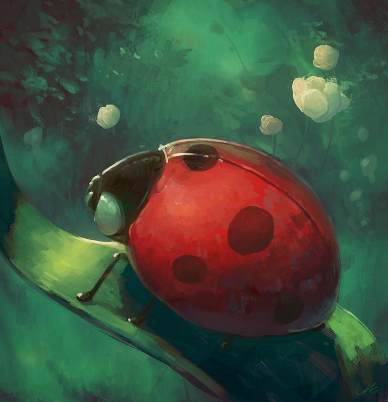 Mr Ladybird by angrymikko