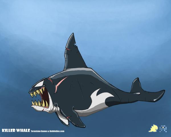 Orca Whale Art Killer whale concept art 01 by