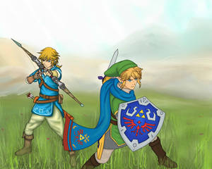 LoZ U meets Hyrule Warriors!