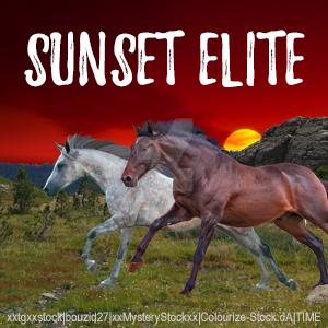 Sunset Elite Avatar by jlryanhorses