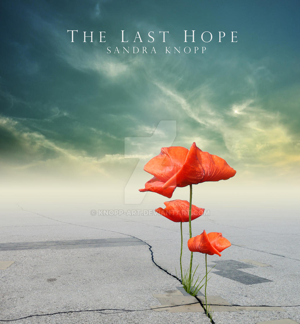 The last hope by Knopp-Art