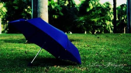 the umbrella...Day 291