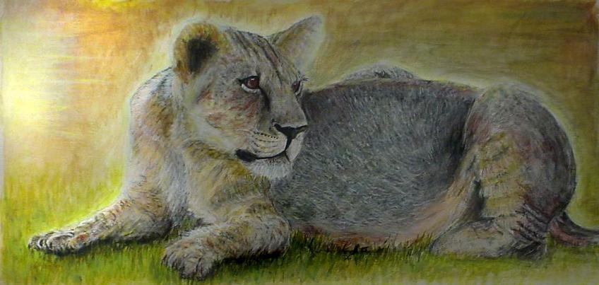 Rawr, I'm A Lion by kevkevharhar
