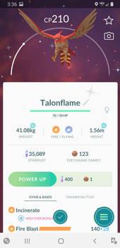 Shiny Talonflame!