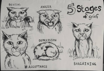 5 Stages of Grief (Cat Edition) by CatsiefY