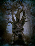In Darkling Woods by Loneanimator
