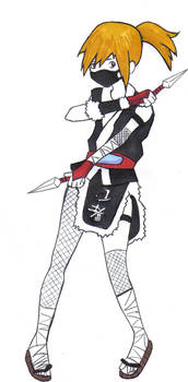ninja colored