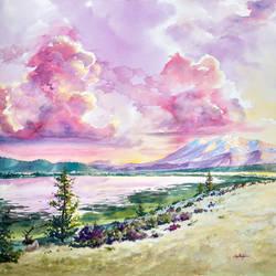 Mt Humphrey Raspberry Sorbet