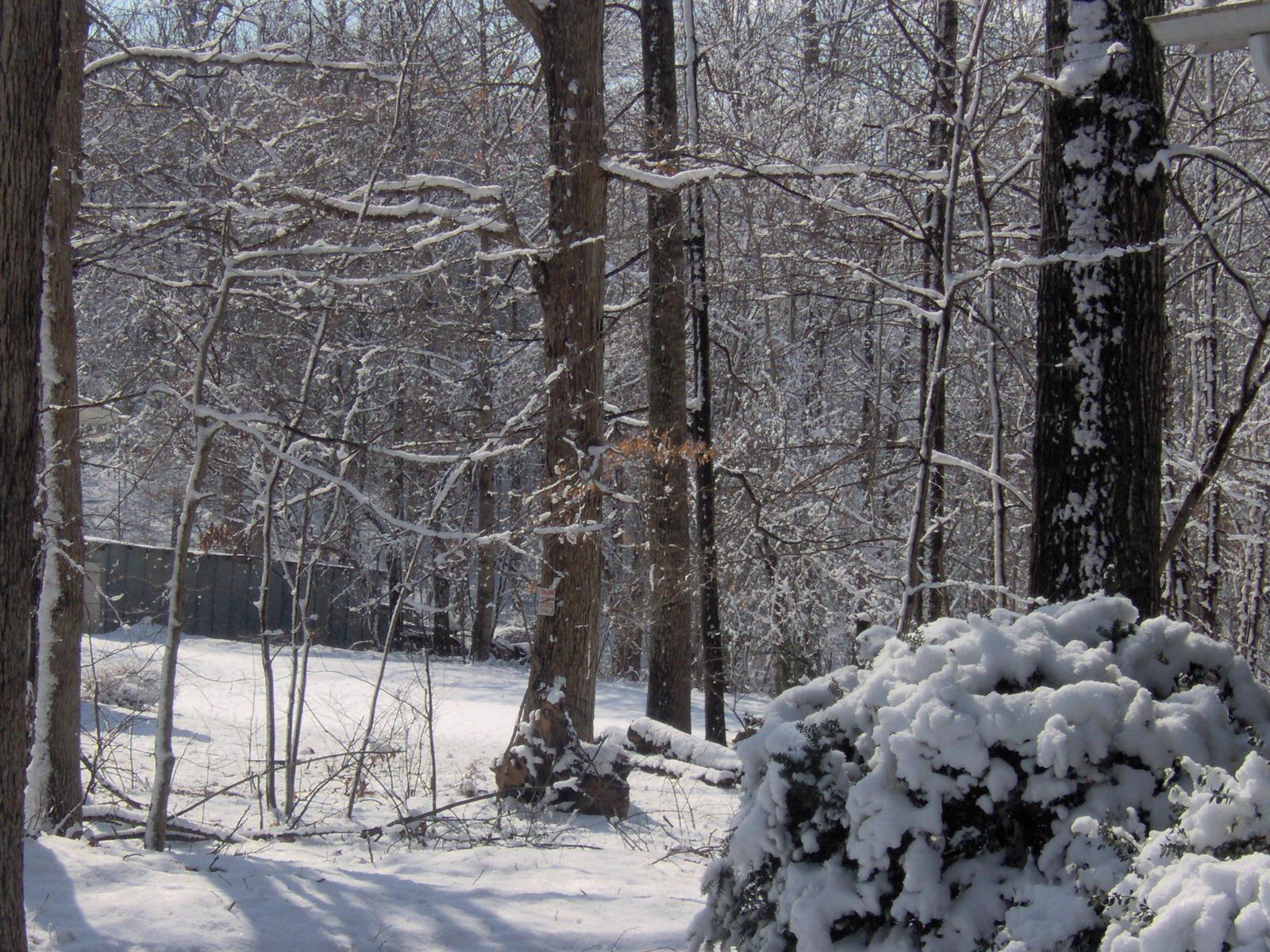A Little Bit of Snow by seiyastock