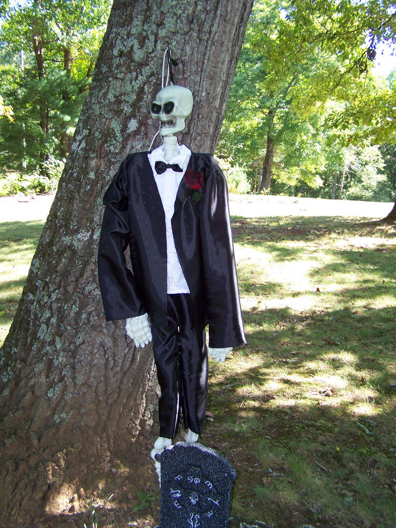 Skeleton Groom by seiyastock