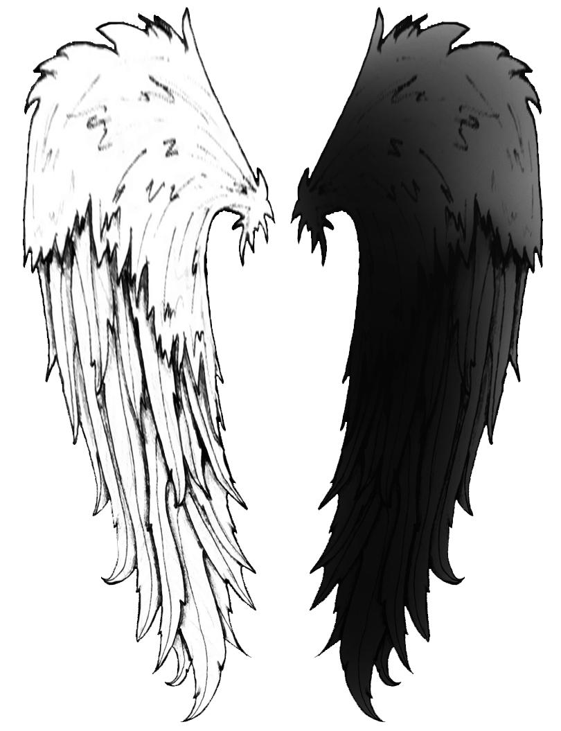 Angel Wings 2 by seiyastock