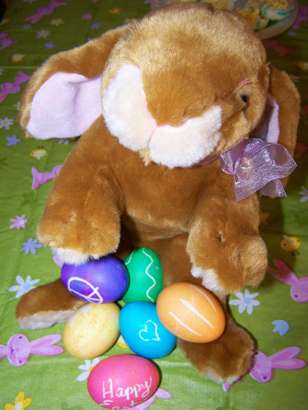 Easter bunny by seiyastock