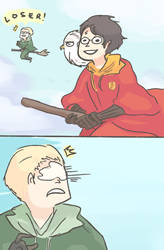 HP: DON'T MESS WITH HEDWIG