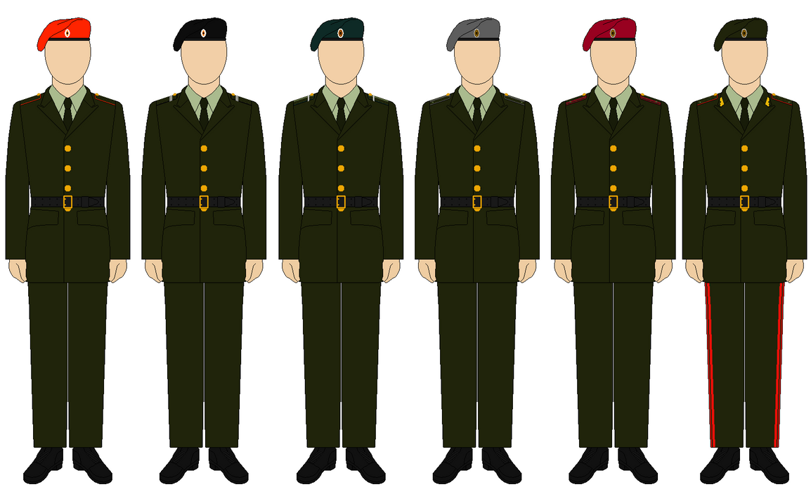 Army officer dress blue uniform guide
