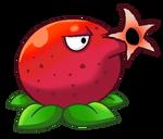 Pomegranate Cannon