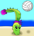 Dusk Lobber playing Volleyball