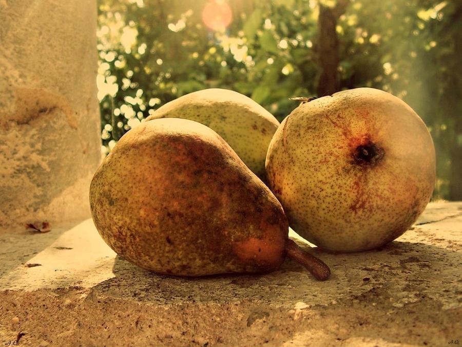 Ako ste gladni ili zedni svratite - Page 2 Autumn_fruits_ii_by_aienmaa-d32326v