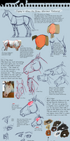 How To Draw Horses Tutorial