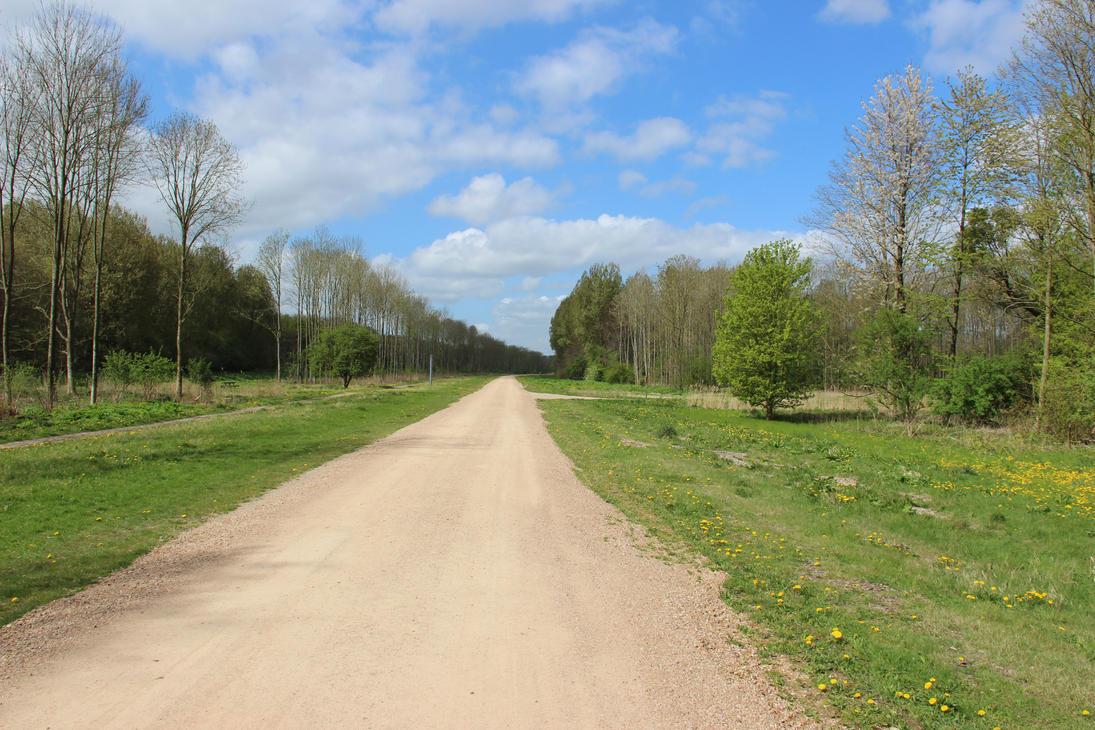 Long road to nowhere by DinosaurianDude