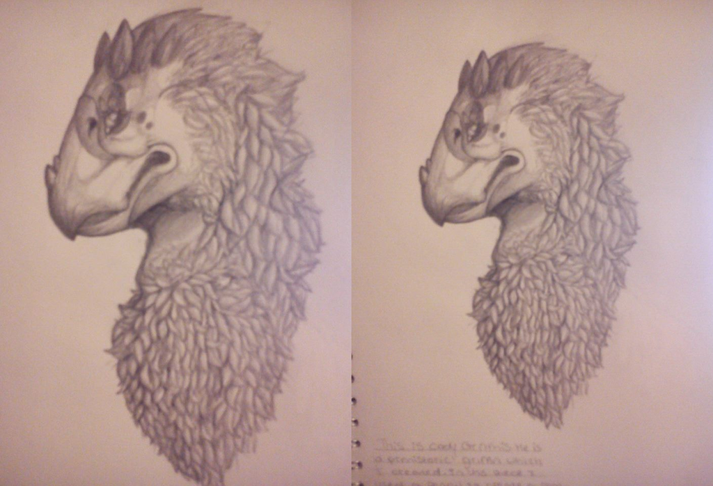 Cody Gritthis traditional by BlueGriffyon