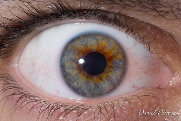 Olho by Danielpedrogam