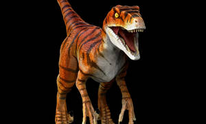 Raptors Jurassic park the lost world 2