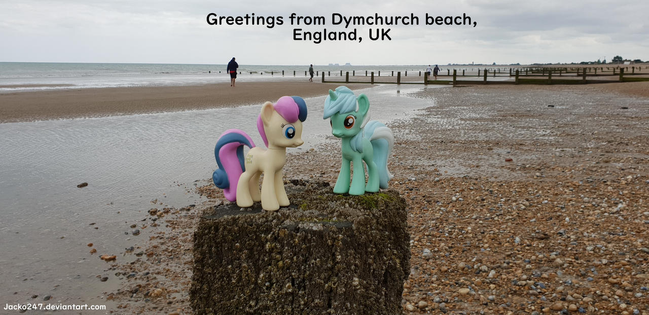 Lyra and Bon Bon at Dymchurch beach by Jacko247