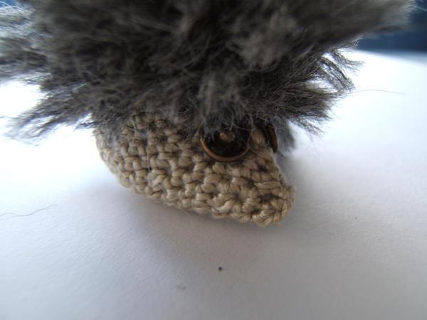 Einstein the Hedgehog by carocha