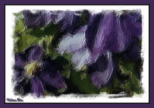 Clematis in Oil