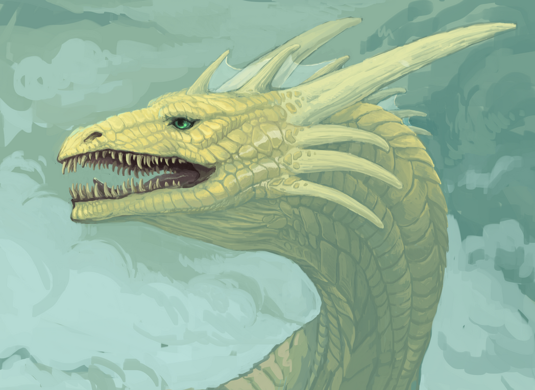 Dragon head by TinToad