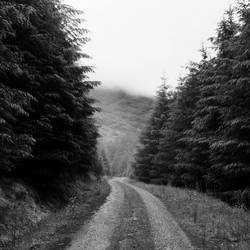 another path by Mortsnort