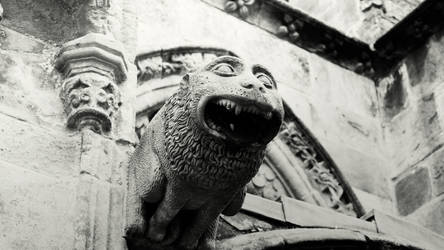gargoyle by Mortsnort