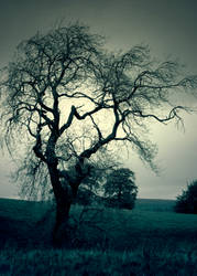 dark and full of sorrows by Mortsnort