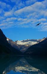 Bird Over Lake Louise by RicksCafe