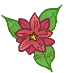 Poinsettia Flower by Canvas-Cutie