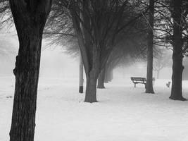 Lonely Park Redux