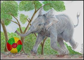 Elephant Race by Supach