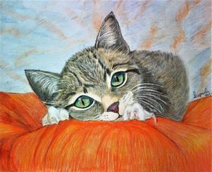 Kitten by Supach