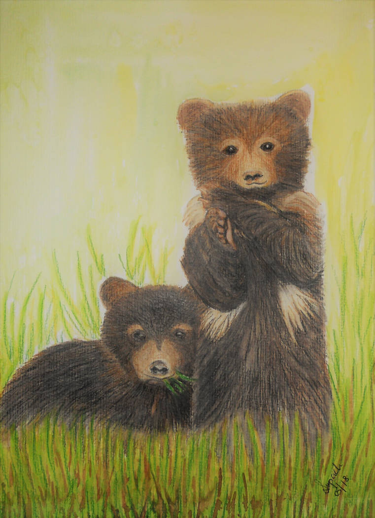 Bear Twins by Supach