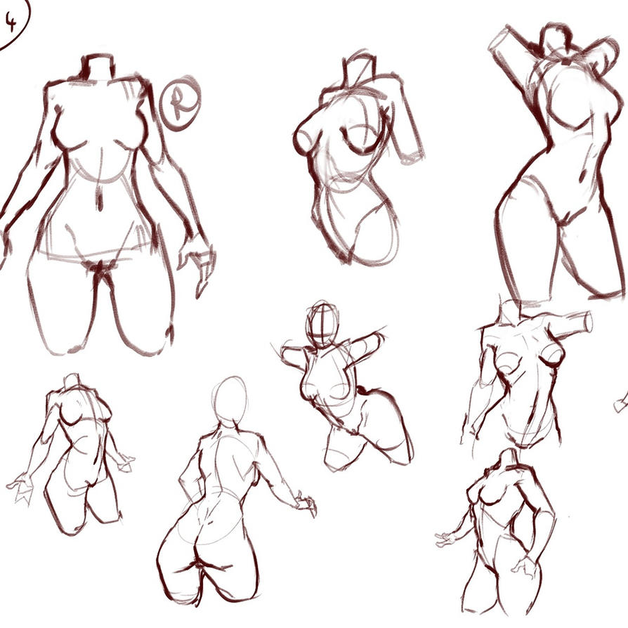 Female Anatomy Studies by Beast7Gamer on DeviantArt