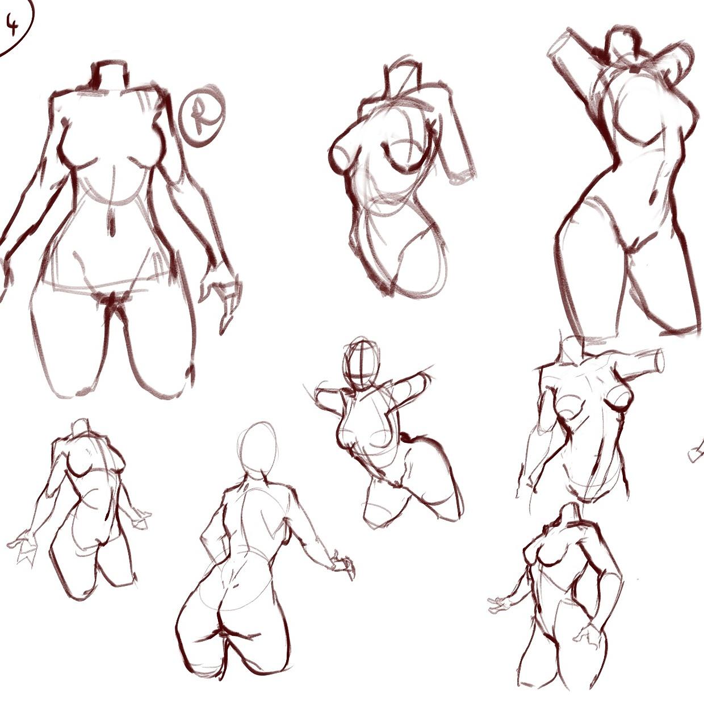 Female Anatomy Studies by Beast7Gamer on DeviantArt