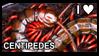 I Love Centipedes Stamp by Owen-Marsh