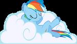 Sleeping Dashie