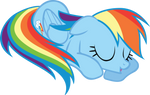 Sleepy Dashie